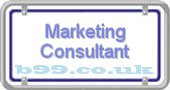 marketing-consultant.b99.co.uk